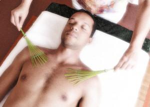 Bambus01